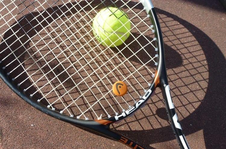 Button Dampener On Tennis Racket