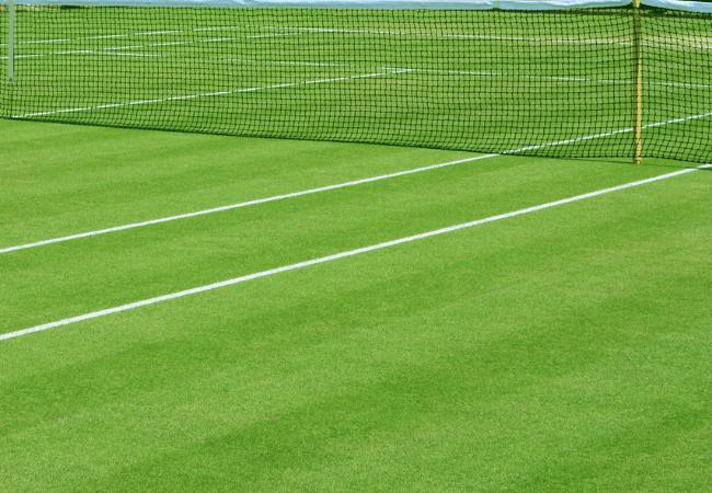 tennis court surface - grass